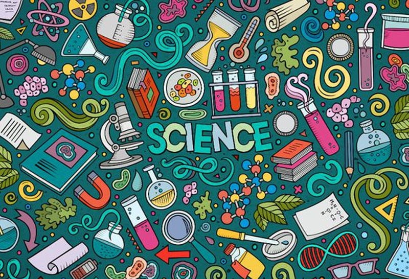 Sherwood High Inter House Science Competition